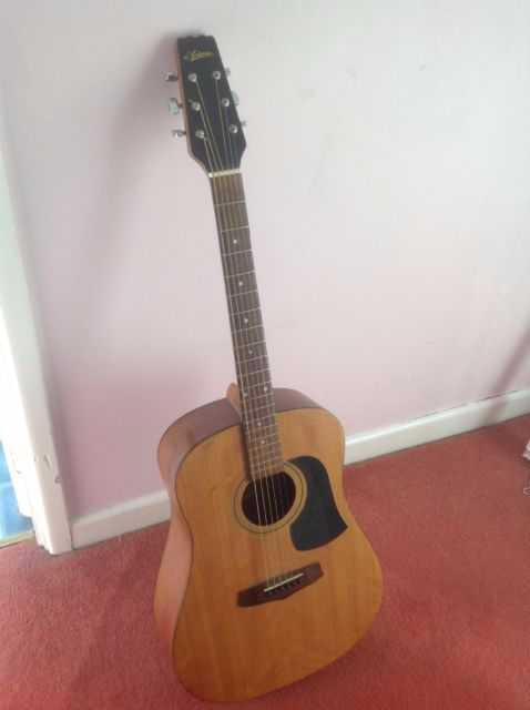 Ariana AW-60 Acoustic Guitar - 1
