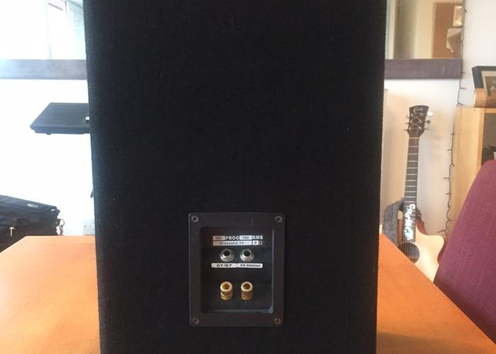 Passive Po Sound 150Watt 10inch Speaker - 1