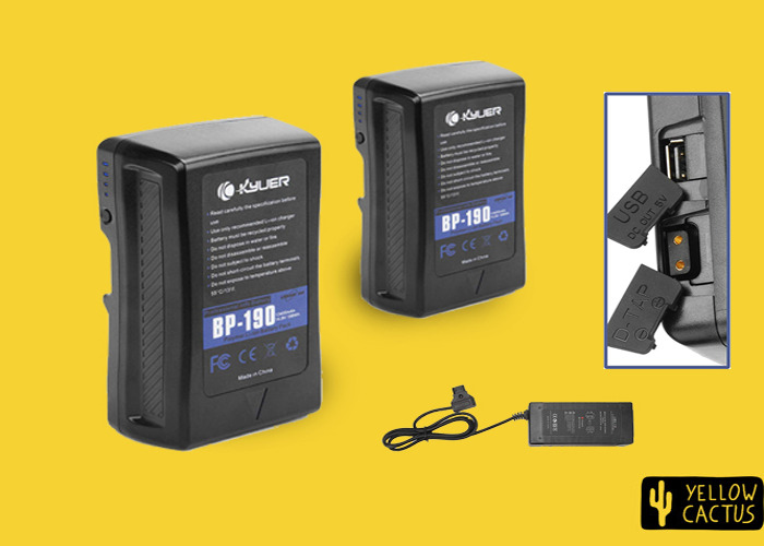 2x V-Locks 190wh Batteries (USB and D-Tap Output) with Charger / V lock Battery - 1