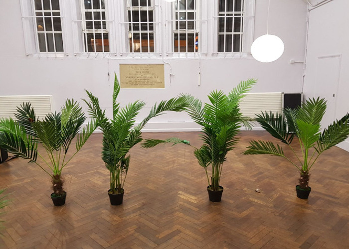 4 x Palm Tree Plants for Decorations - 1