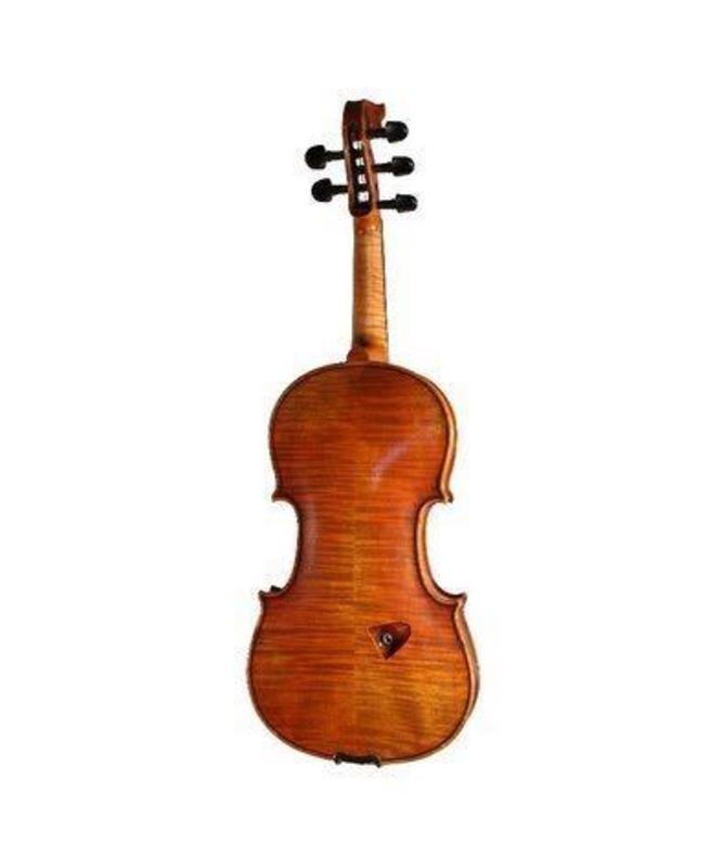 5 String Electro Acoustic Violin by Bridge(Tasman) - 2