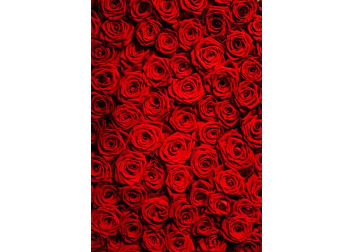 5x7ft Vinyl Valentine's Day Red Rose Photography Background Photo Studio Prop Backdrop - 2