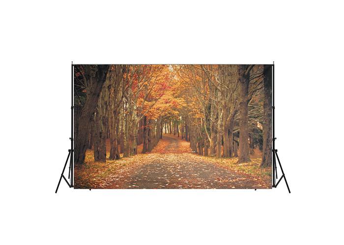 7x5ft Autumn Forest Background Photography Backdrop Studio Photo Vinyl Cloth - 1