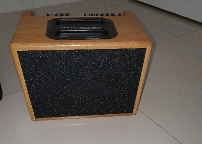 Acoustic AER amp - 2