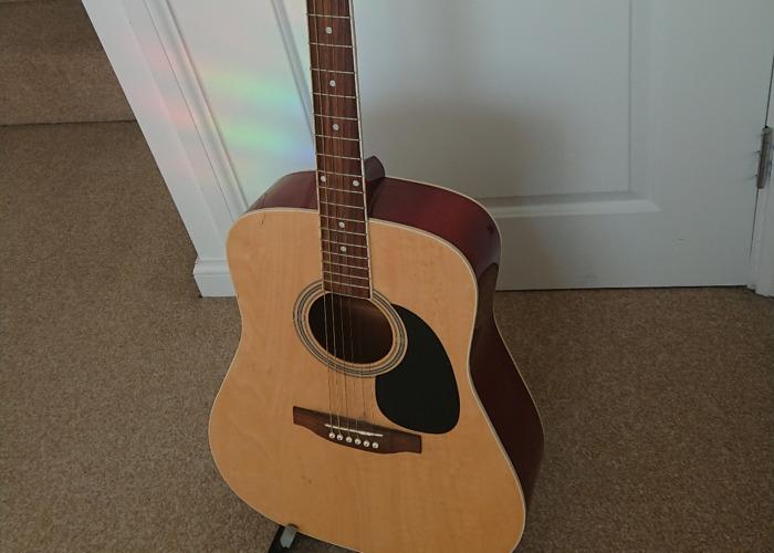 Acoustic guitar (Freshman) - 2