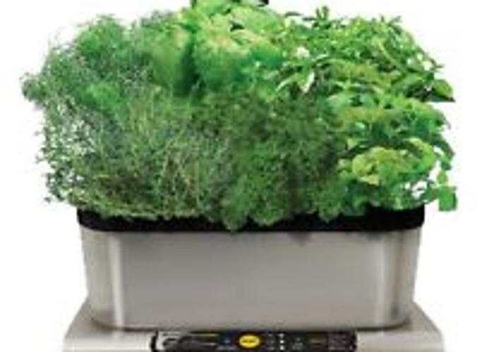 Aerogarden Indoor Table Top Garden  - 1