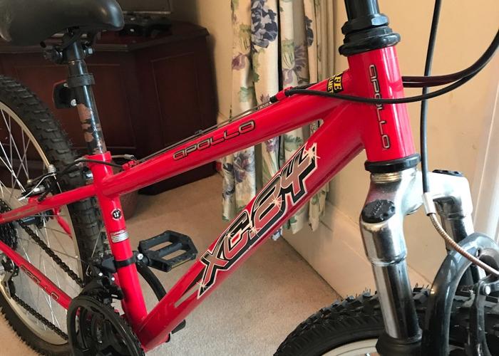 Apollo XC 24 bike  - 2