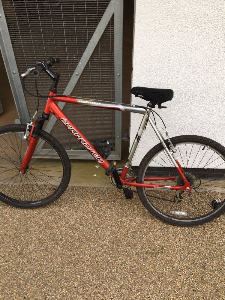 Baracuda Bicycle  - 1