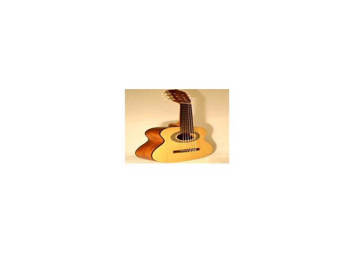 Basic acoustic guitar for rental - 1