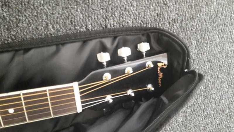 Bluemoon Black Guitar - 2