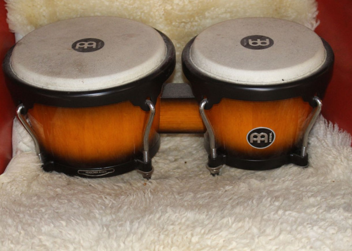 Bongo Drums - 1