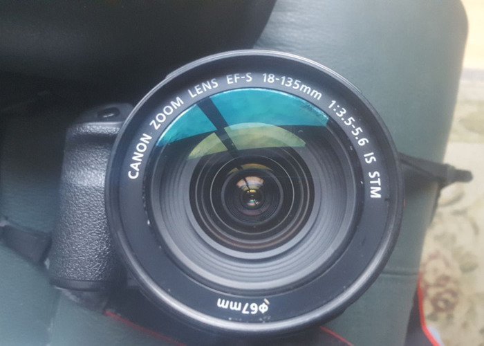 Canon 18-135mm lens - 1