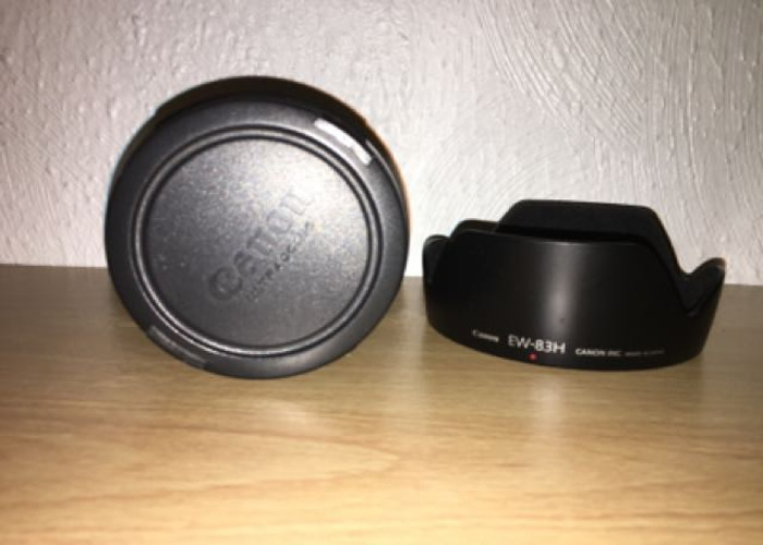 Canon 24-105 L f 4 IS  - 2