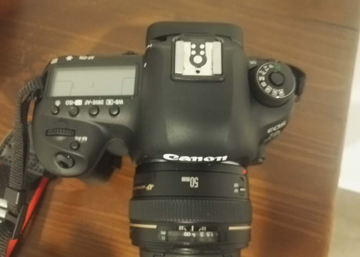 Canon 5D MK4 with Canon 50mm f1.4 USM Lens - 2