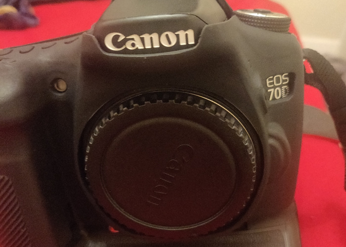 Canon 6D mk2 + Canon 70D + 4 lenses  - 2