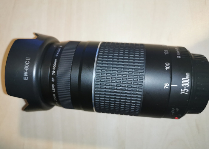 Canon 75-300mm f4 - 1