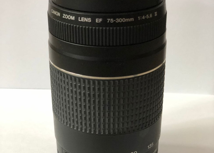 Canon 75-300mm Zoom Lens - 2