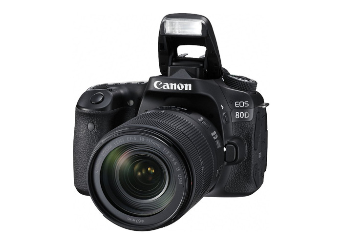 Canon 80D + 18-135mm Canon Lens + Tripod - 1
