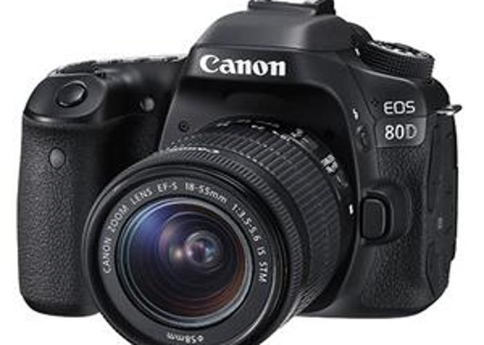 canon 80d--3-lenses-95541955.jpeg