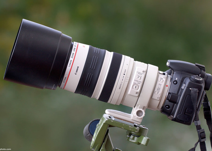 Canon EF 100-400mm f/4.5-5.6 L IS USM - 1