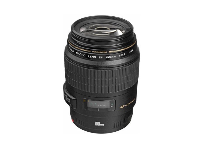 Canon EF 100mm f/2.8 Macro USM Lens - 1