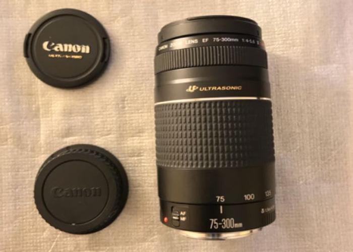 Canon EF 75-300mm f/4-5.6 III  - 1
