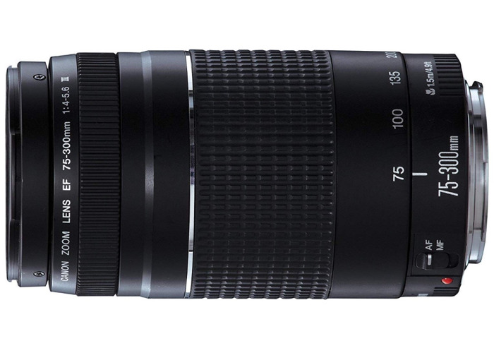 Canon EF 75-300mm f/4-5.6 III - 2