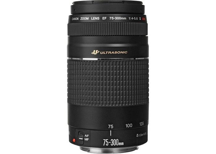 Canon EF 75-300mm f4-5.6 III USM Lens - 1