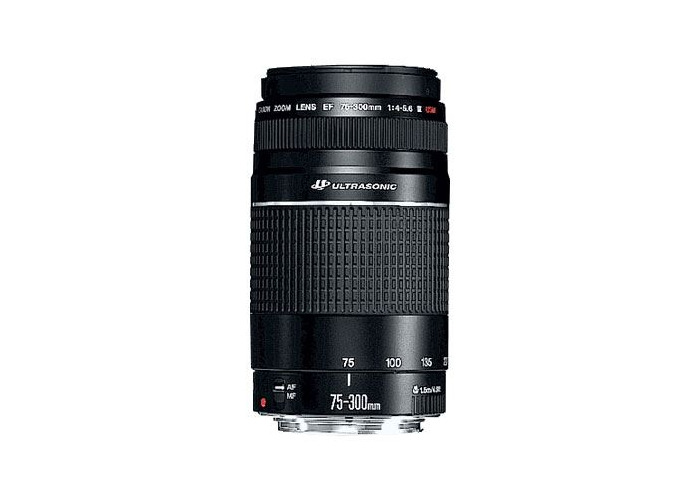 Canon EF 75-300mm f4-5.6 USM III Lens - 1
