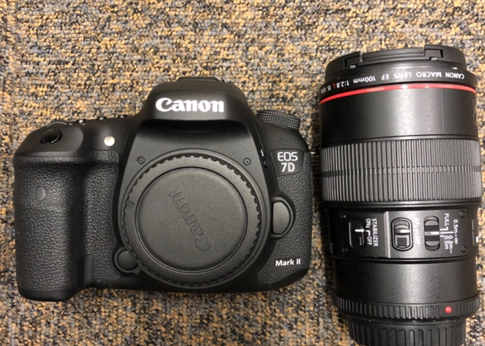 Canon EOS 7D with Macro 100mm L lens  - 1