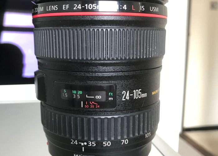 Canon L series 24-105mm lens - 1