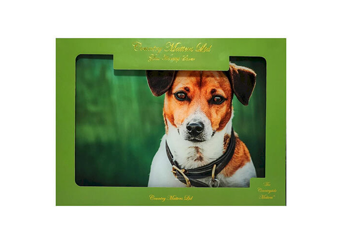 Country Matters Jack Russell Glass Work Top Saver - 1
