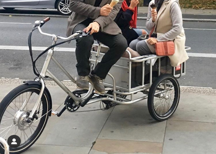 Electric Cargo Bike  - 1