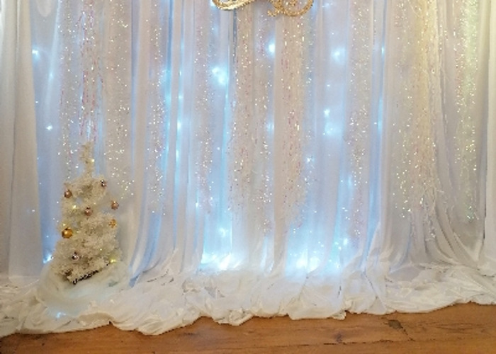 Events Photography Christmas backdrop - 1