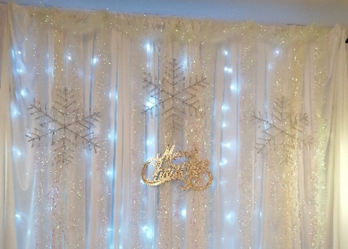 Events Photography Christmas backdrop - 2