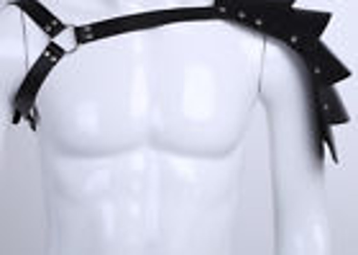 Faux Leather Armor/ Buckles/ Chess Harness - 1
