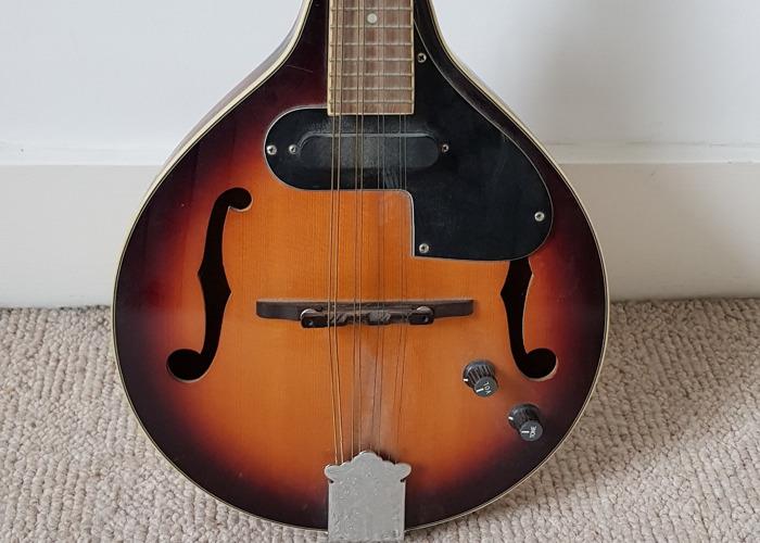 Fender Electro-acoustic Mandolin - 2