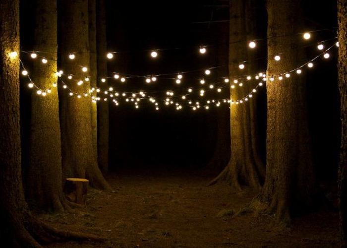 festoon wedding-lights--indoor-and-outdoor-90129291.jpg