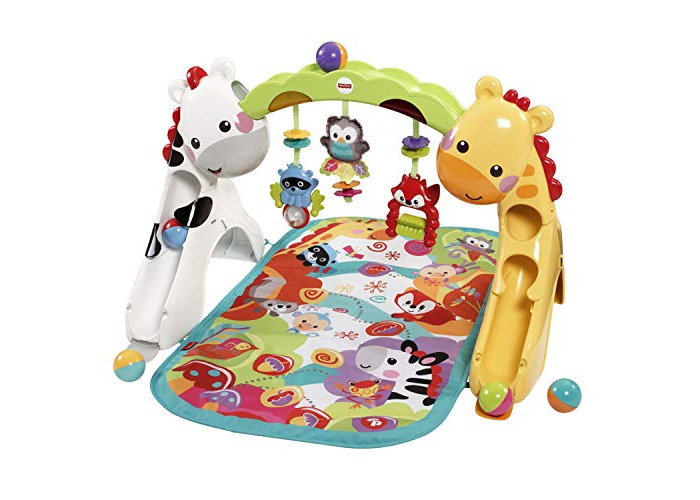 Fisher-Price CCB70 Newborn-to-Toddler Play Gym - 1