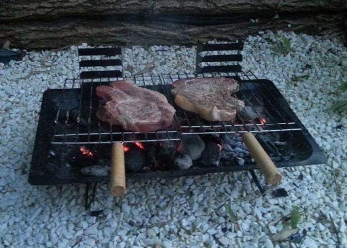 Folding mini BBQ grill - 1
