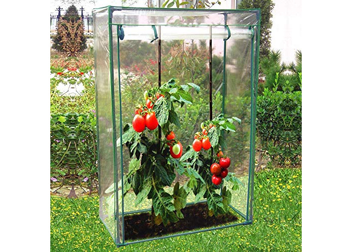 Greenhouse Tomato Grow Garden Outdoor Patio Green Storage Shed for Food Keeping Growth Growing Size 100 x 50 x 150 Cm By GreenBlade GH290 New UK Large Anti UV Simple Install - 1