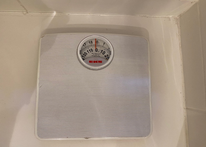 Health Scale - 1