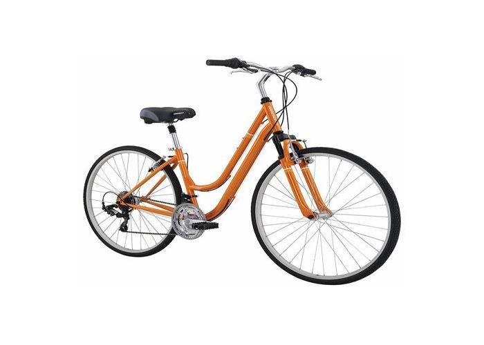 Hybrid Bike - 1