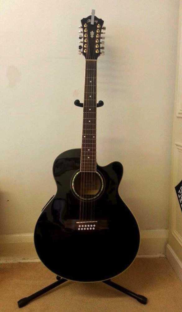 Ibanez AEL 2012 12 Strings Acoustic - 1