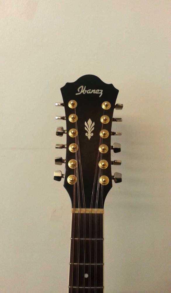 Ibanez AEL 2012 12 Strings Acoustic - 2