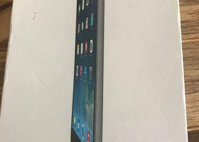 iPad Mini 16GB - 2