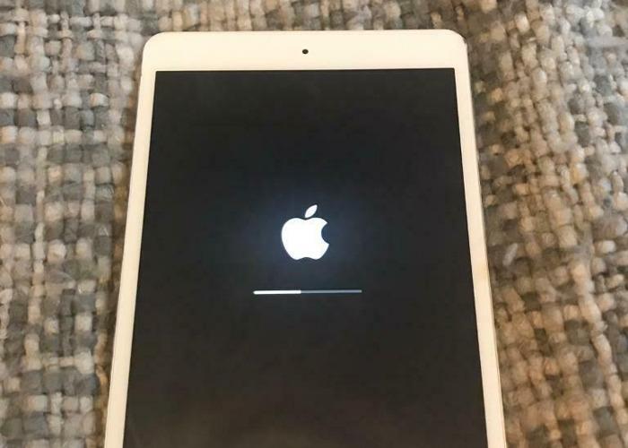 iPad Mini 16GB - 1