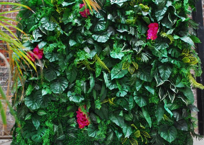 Jungle Photo Backdrop - 2