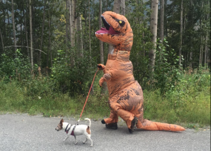 Rent Jurassic World Inflatable Adult T-Rex Costume in South San Francisco