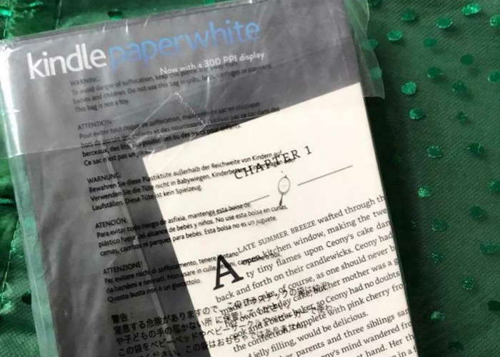 Kindle paperwhite 4GB 7th generation  - 1